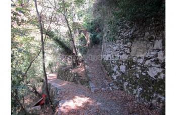 Zoagli - Semorile - San Pietro di Rovereto - Zoagli