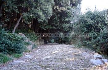 Rapallo - Montallegro