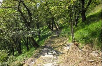 Montallegro - Crocetta - Rapallo
