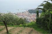 Rapallo - San Lorenzo della Costa