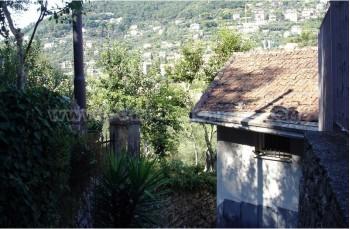 De Camogli à San Rocco di Camogli