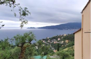 Rapallo - Sat'Ambrogio - Semorile - Rapallo