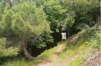 Portofino Vetta - Semaforo nuovo - Batterie - San Rocco di Camogli - Portofino Vetta