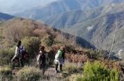 Da Pian dei Merli a Monte Pegge