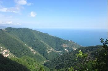 View from Monte Zuccarello