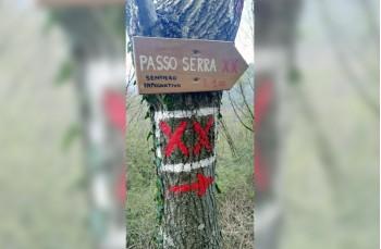 Segnavia ritorno a Passo Serra
