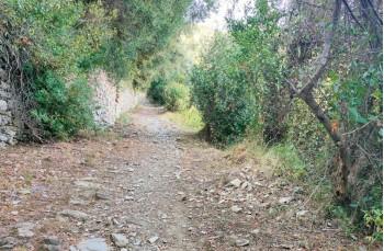 Sentiero per S. Pantaleo