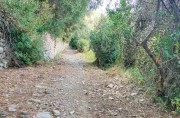 Path to S. Pantaleo