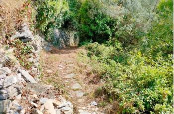 Sentiero verso San Bernardo
