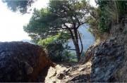 Portofino - San Fruttuoso