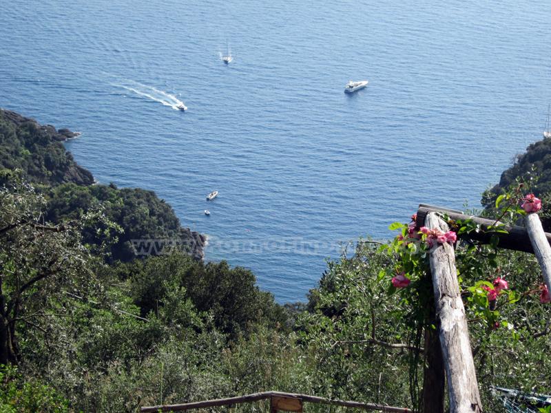 Località Casella, nel Parco di Portofino