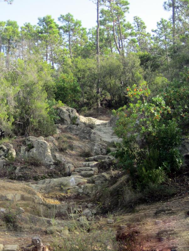 sentiero roccioso Punta Manara