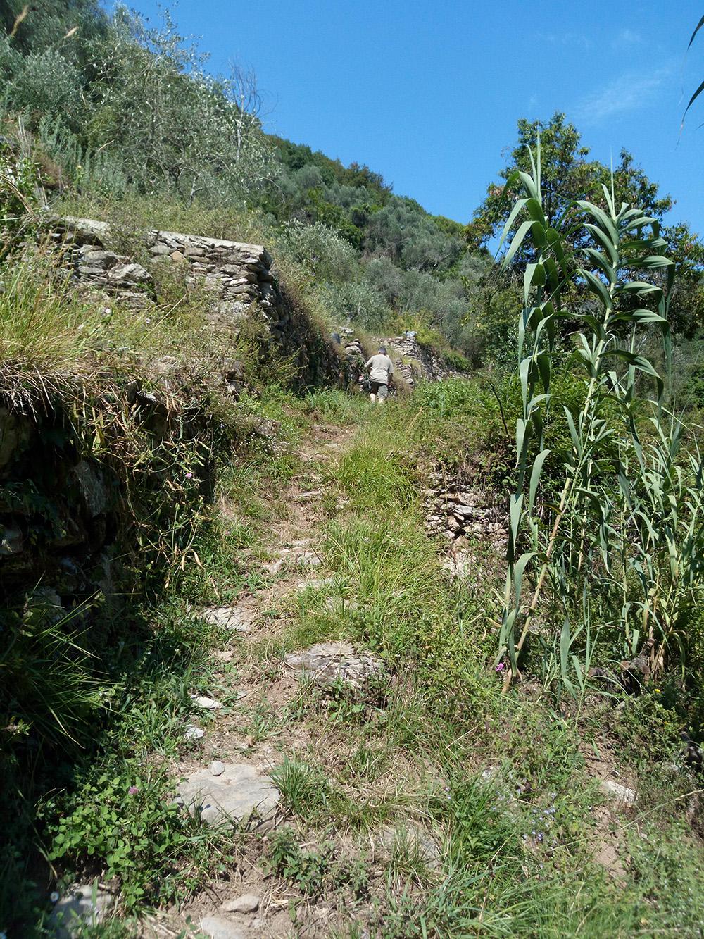 towards Montallegro